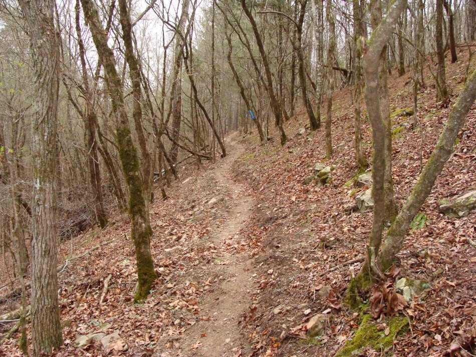 Cossatot Pic TT191 Single Track